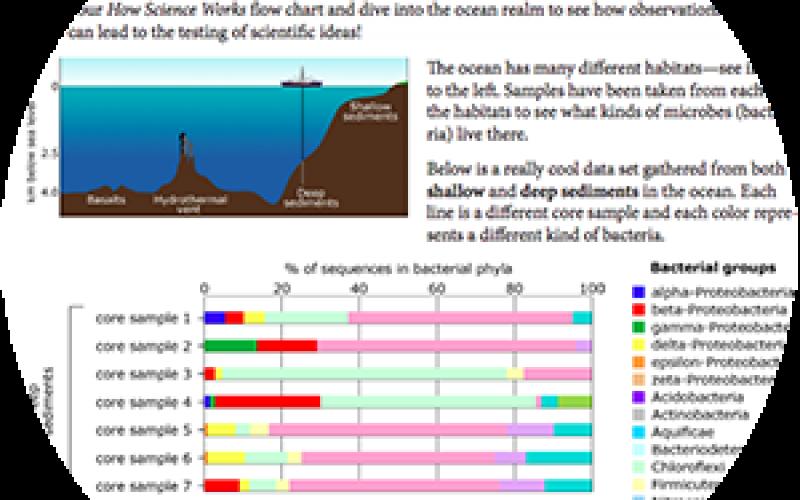 Exploring Seafloor Data