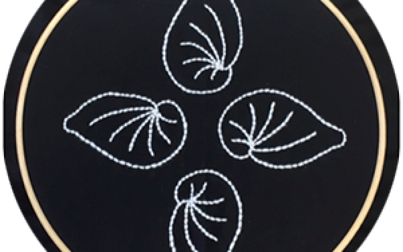 Embroidering Microfossils