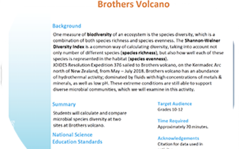 Biodiversity of Hydrothermal Vents at Brothers Volcano