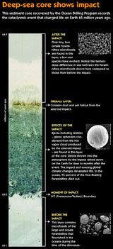 Deep-sea Core