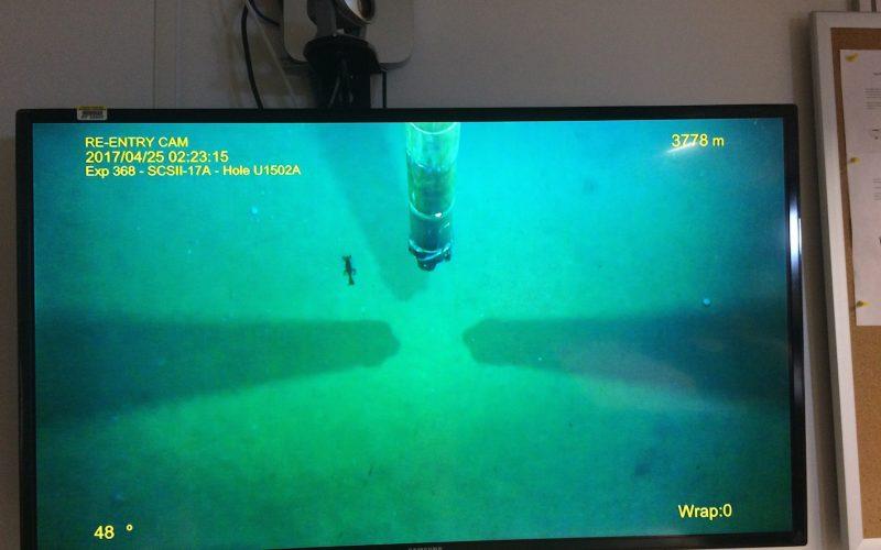 Deep-sea life – Mon, May 8