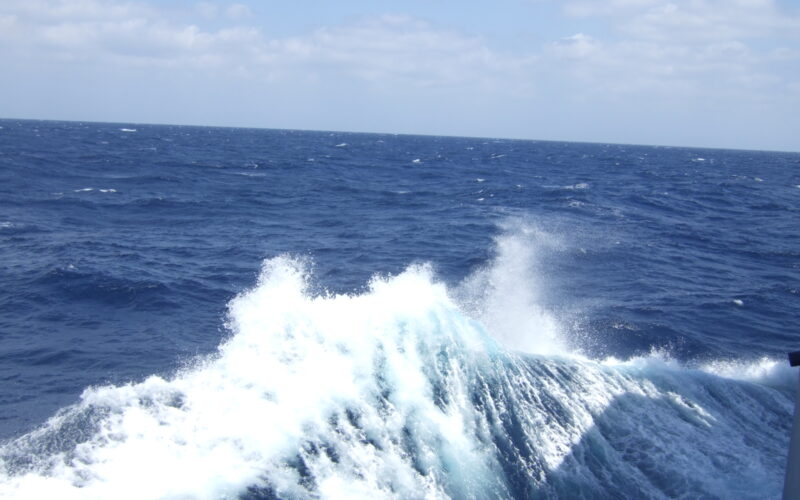 The sea is very bumpy today!