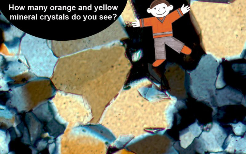 Flat Stanley and his thin section