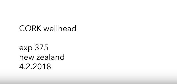 thumbnail for video CORK Wellhead