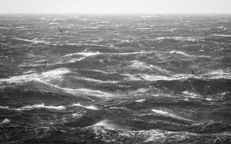 Arrival in Antarctic waters