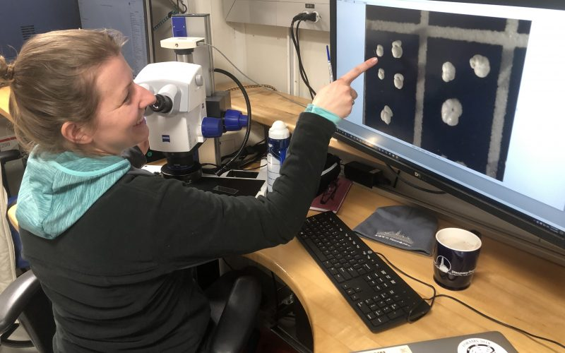 Career Spotlight: Micropaleontologist Anieke Brombacher