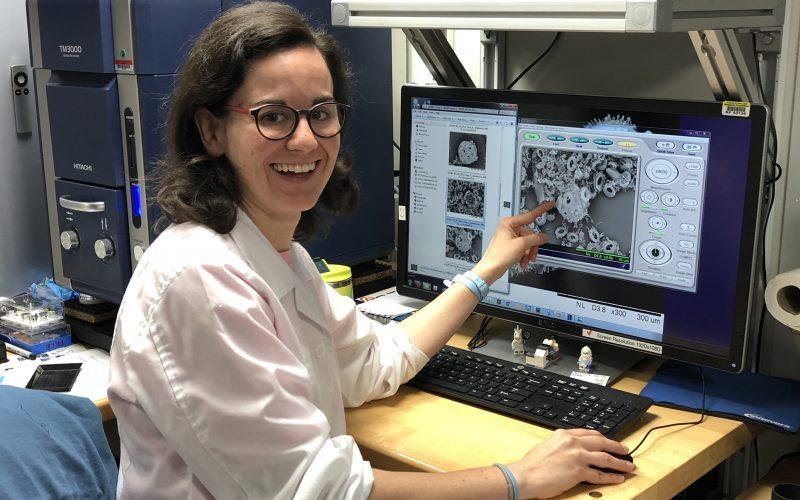 Career Spotlight: Paleontologist Mariem Saavedra Pellitero