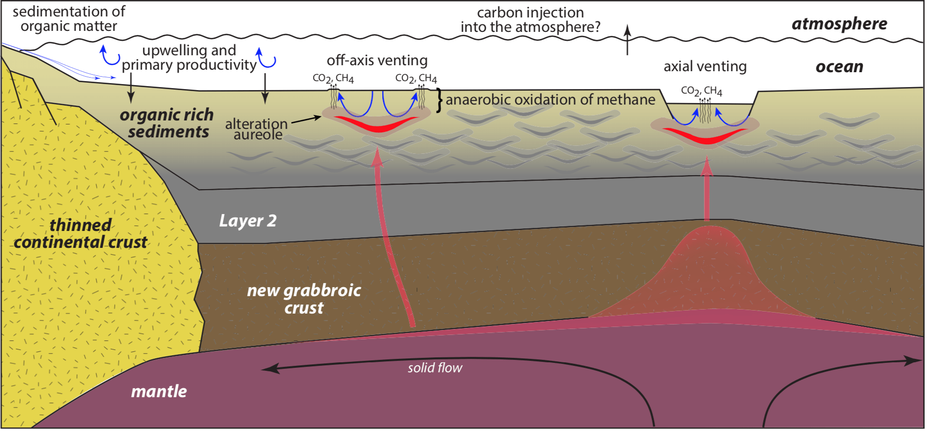 Integrated sedimentological, tectonic, magmatic, and microbial processes at work in Guaymas Basin and the associated carbon pathways. (From A. Teske et al. 2018)