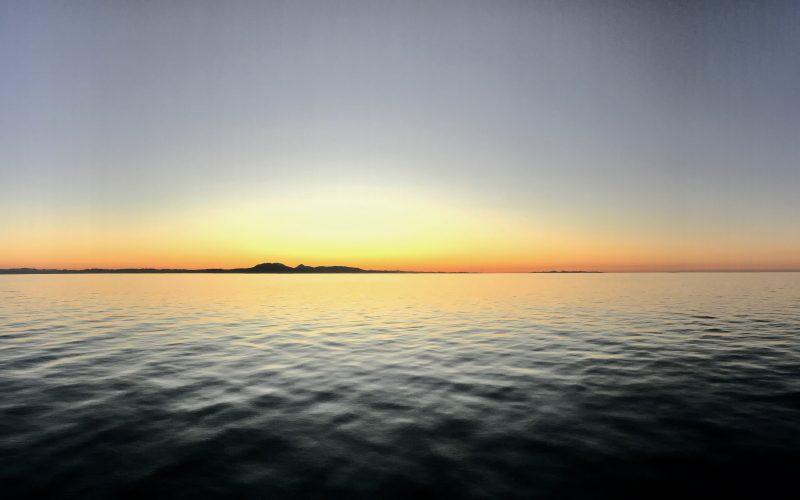 La Vida En Medio Del Mar