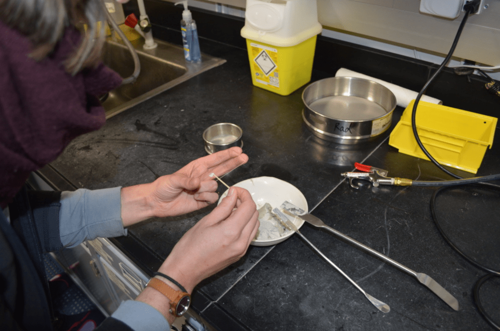 A shot of a scientist's hands over a lab bench. She is leaning over a sediment-filled bowl with a slide in one hand. She is smearing a tiny amount of light grey sediment from a toothpick onto the slide.