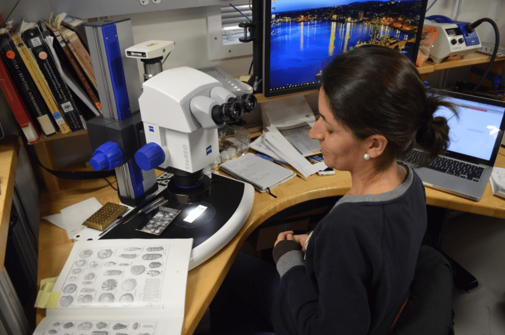 A scientist sits in front of a microscope. There is a book open in front of her with detailed drawings of foraminifera. She is looking at the book and appears to be talking.
