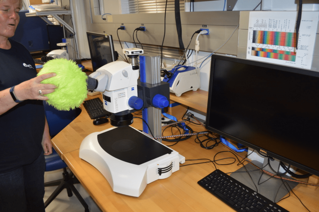 A fuzzy green plushie, Little Cthulhu, being held over a microscope's eyepiece by a scientist, Ulla Röhl. Ulla appears to be talking. There is nothing under the microscope and it does not appear to be on.
